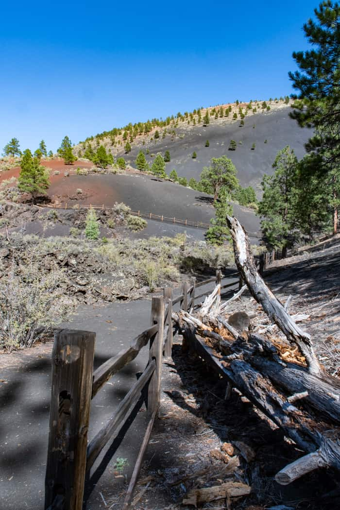 View of Lava Flow trail with cinder walk, wood railing, pine trees and view of cinder cone
