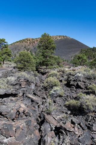 Lava rock crevis on the Lava Flow trail