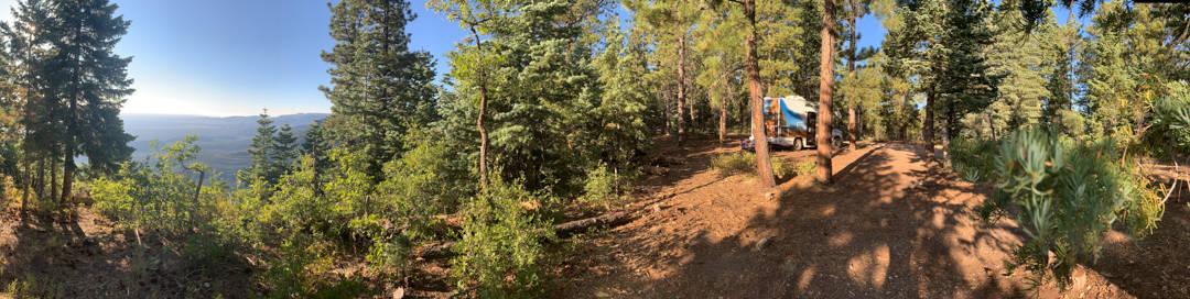 Camper hidden in the woods