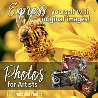 Photos for Artists - Nature images for your art projects