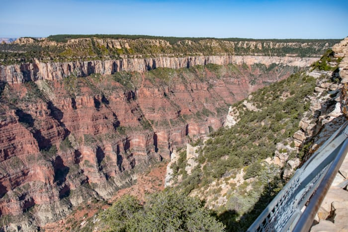 View into the North Rim Grand Canyon
