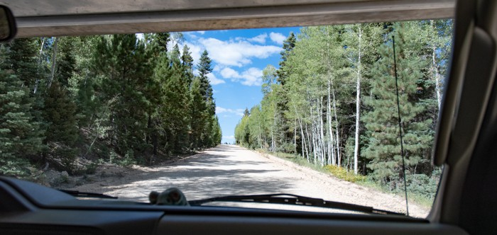 On a forest road on our RV adventure