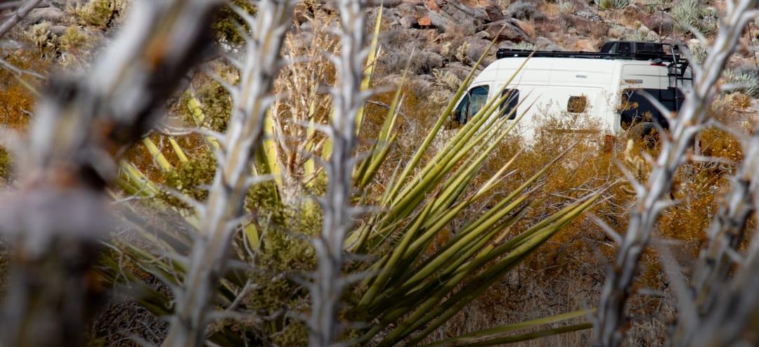Exploring Anza-Borrego Desert State Park with a Revel RV Camper Van