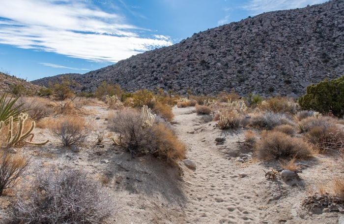 Morteros trail in Anza-Borrego
